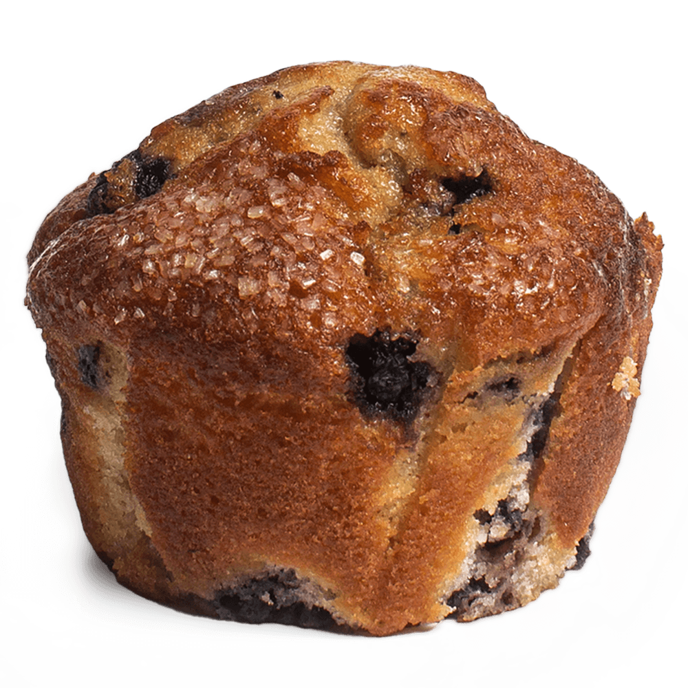 Muffin – Blueberry